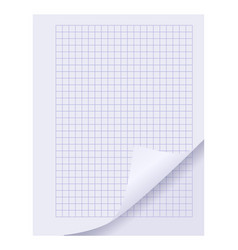 blank spiral notepad sheet element vector image