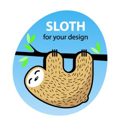 Cute cartoon sloth vector