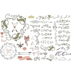 Doodles borderbrushesdecorColored Floral vector image