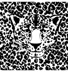 Seamless animal fur pattern vector