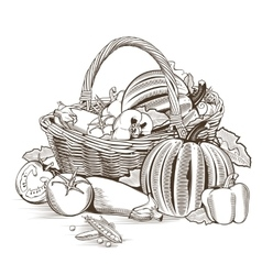 Basket Of Vegetables vector image