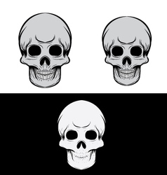 Black and gray skull vector