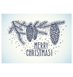 Christmas spruce branch and inscription vector