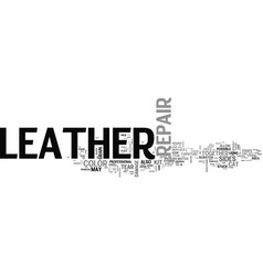Advanced leather repair text word cloud concept vector