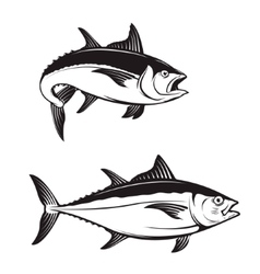 Tuna fish icons vector image