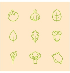 Flat line vegetables icons vector