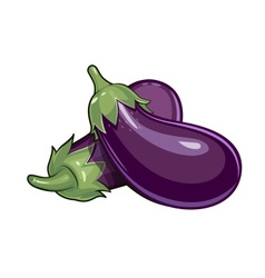 Couple of eggplants vector