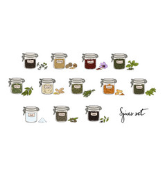 Spices in jars big set part 1 collection hand vector