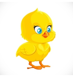 Cute little yellow cartoon chicken vector