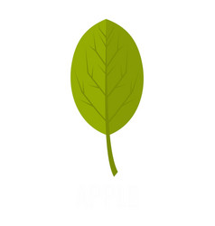 apple leaf icon flat style vector image