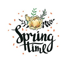 Stylish lettering Spring timewith flowers and vector image