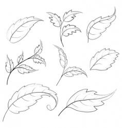 leaves contours vector image vector image