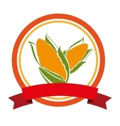 Corn vegetable fresh icon vector