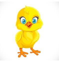Cute yellow cartoon baby chicken vector