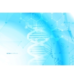 DNA molecule structure background vector image vector image