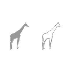 giraffe grey set icon vector image vector image