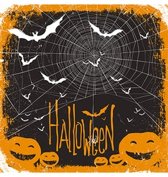 Halloween background spider and pumpkins vector