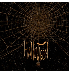 Halloween background spider web vector