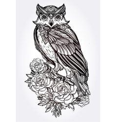 Hand drawn owl with roses vintage style vector