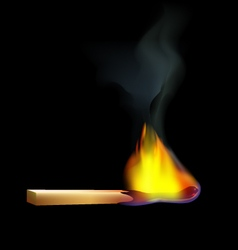 burning-wooden-match-on-a-black-background vector image