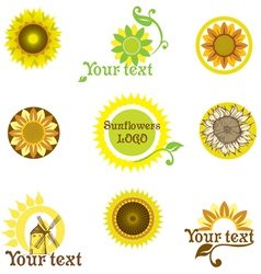 Stylized sunflowers vector