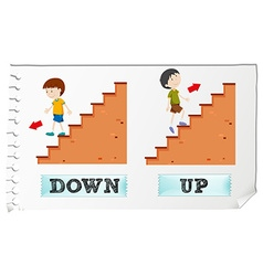 Opposite adjectives down and up vector image