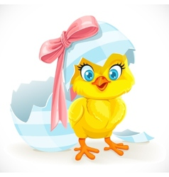 Cute baby chick just hatched from an easter egg vector