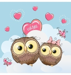 Cute Lovers Owls vector image