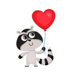 Cute and funny raccoon holding red heart shaped vector