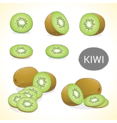 Set of kiwi fruit in various styles vector