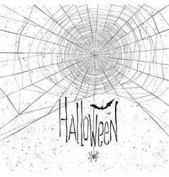 Halloween background spider web white vector