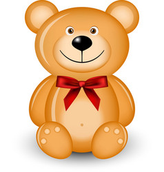 Bear with red bow vector