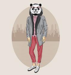 fashion panda portrait vector image