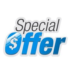 Special Offer vector image vector image