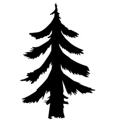 Fir forest motive vector