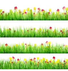 Grass And Flower Set Isolated On White EPS 10 vector image vector image