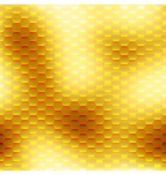 honeycombs vector image
