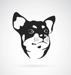 Image of an chihuahua dog vector
