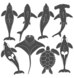 set of images with marine animals vector image vector image