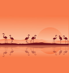 Silhouette of flamingo with reflection on the lake vector