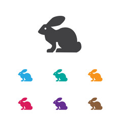 of zoo symbol on rabbit icon vector image vector image