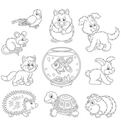 set of pets vector image vector image