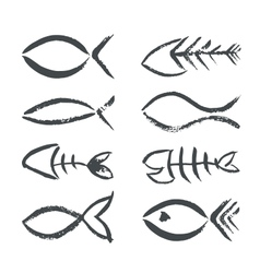 Isolated hand drawn fish signs vector