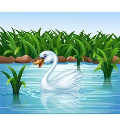 Cartoon beauty swan floats on river vector