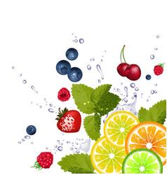 Splash of Fruit Background vector image