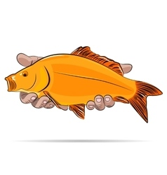 Gold fish in a hands vector