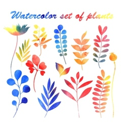 Watercolor set of plants vector