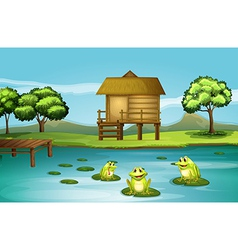 A pond with three playful frogs vector