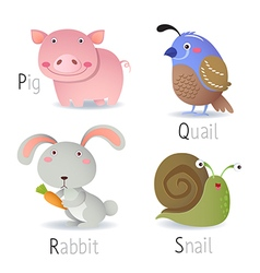 Alphabet with animals from p to s vector