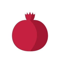 Pomegranate icon in flat style vector